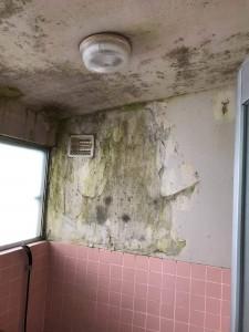 浴室塗装もできるんです!