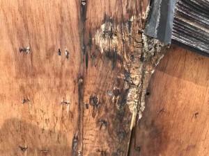 クラック ヒビ 塗装の必要性 漏水